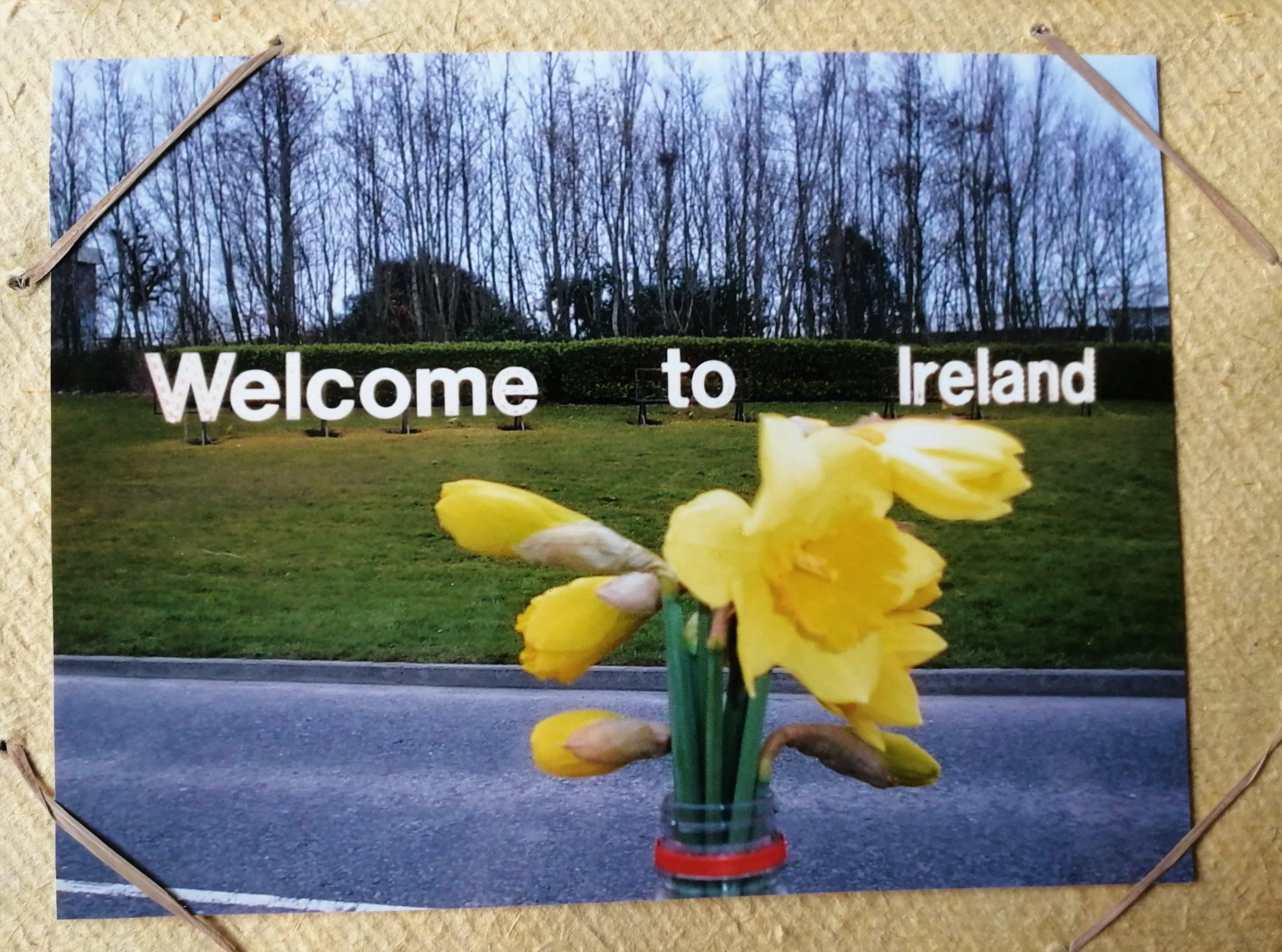 Witamy w Irlandii!